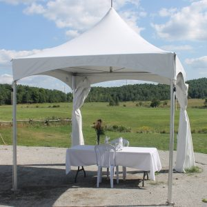 10X10 party tent